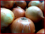 onions, processing, harvesting, packaging machines